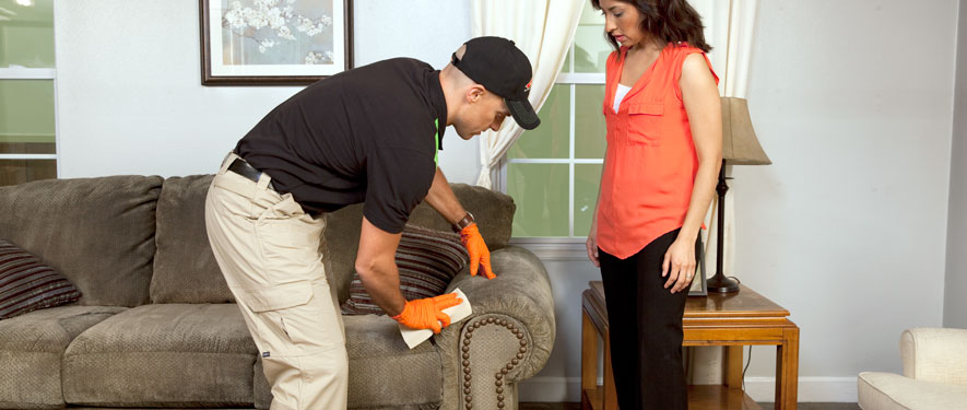 Dayton, OH carpet upholstery cleaning